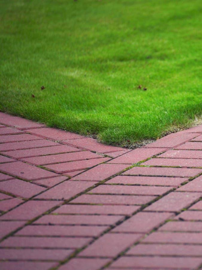 Trajeto de pedra do jardim com grama, passeio do tijolo imagem de stock royalty free