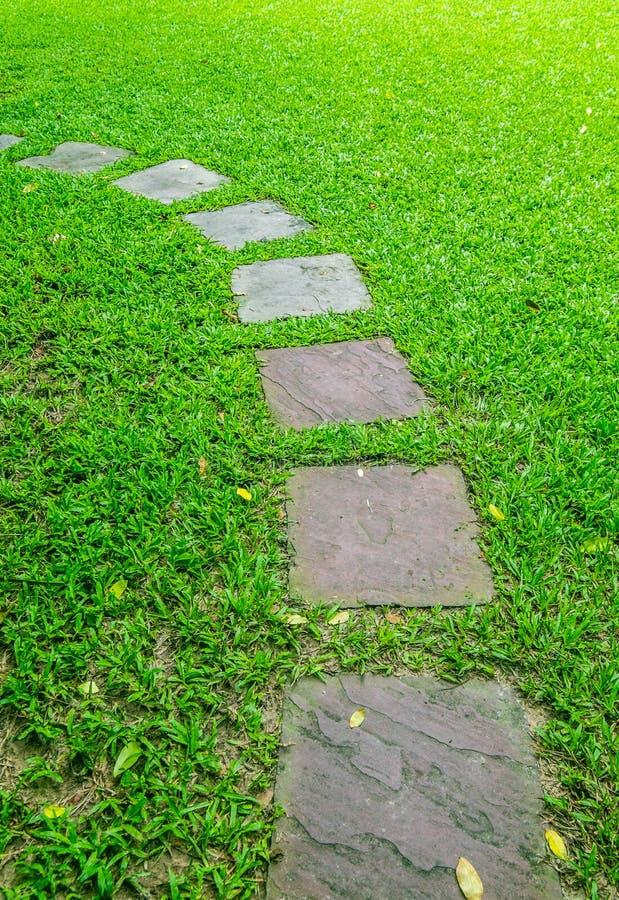 Trajeto de pedra do pé no jardim foto de stock