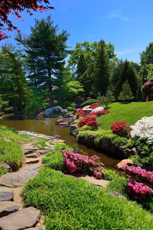 Trajeto de pedra e arbustos de florescência imagem de stock royalty free