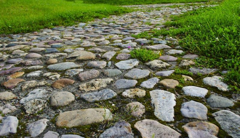 Trajeto de pedra no parque imagem de stock royalty free