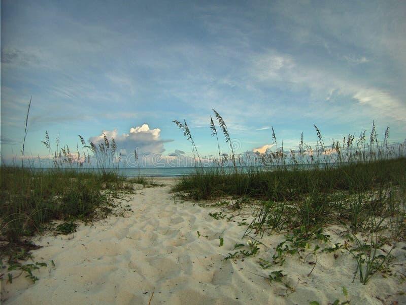 Trajeto de Sandy através das dunas ao mar imagens de stock