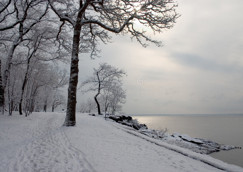 Trajeto do inverno foto de stock royalty free