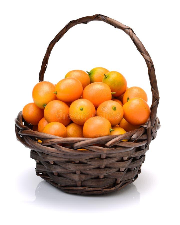 Trajeto do Kumquat imagem de stock royalty free