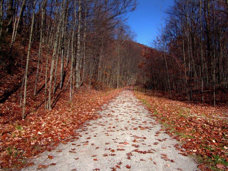 Trajeto do outono foto de stock
