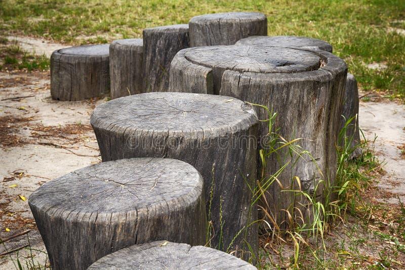 Trajeto dos cotoes de árvore rachados imagem de stock royalty free