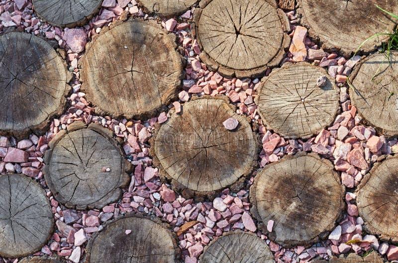Trajeto, fundo e textura de madeira marrons redondos da superfície do coto imagens de stock royalty free