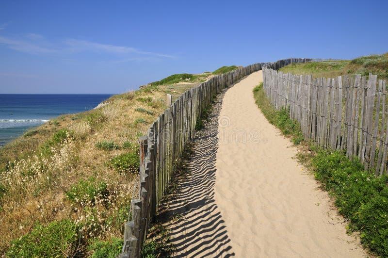Trajeto nas dunas de Quiberon em france foto de stock royalty free