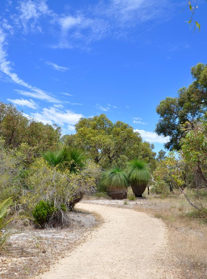 Trajeto no australiano Bushland imagens de stock royalty free