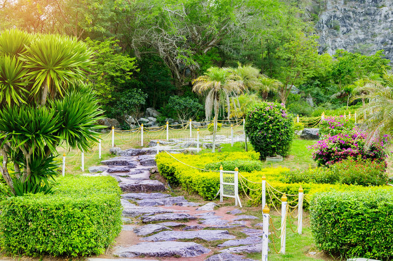Trajeto no jardim verde do gramado, paisagem da passagem da natureza fresca fotografia de stock royalty free