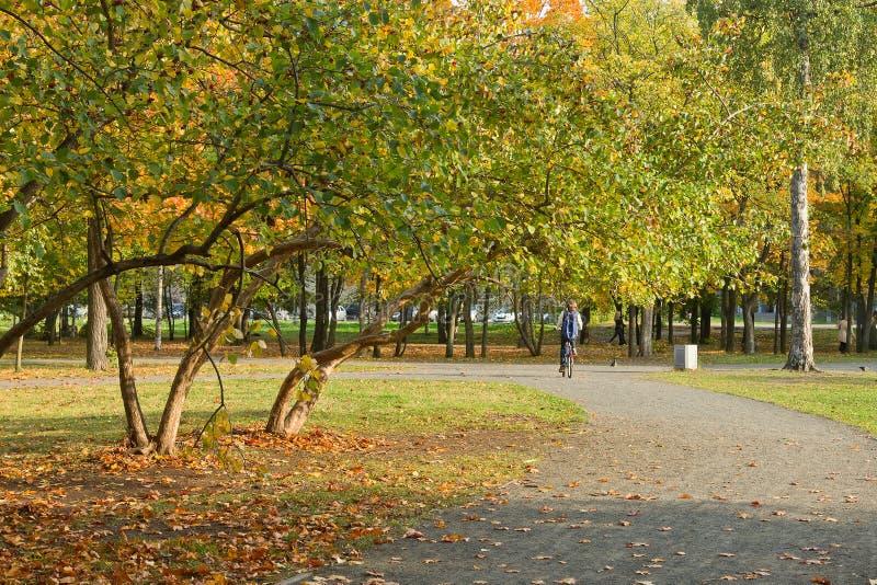 Trajeto no parque da cidade do outono foto de stock royalty free