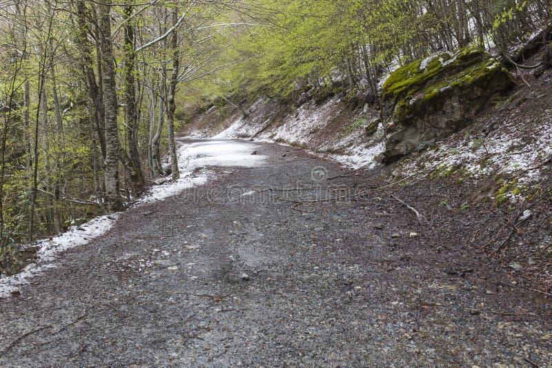 Trajeto no vale de Bujaruelo no parque nacional de Ordesa y Monte Perdido com alguma neve fotos de stock