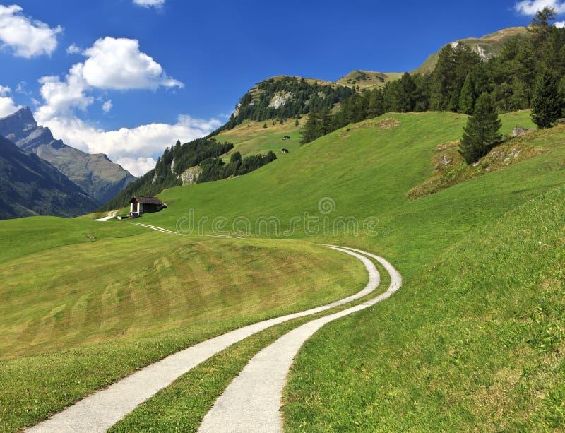 Trajeto que conduz à cabana alpina em Splugen, Suíça fotos de stock royalty free
