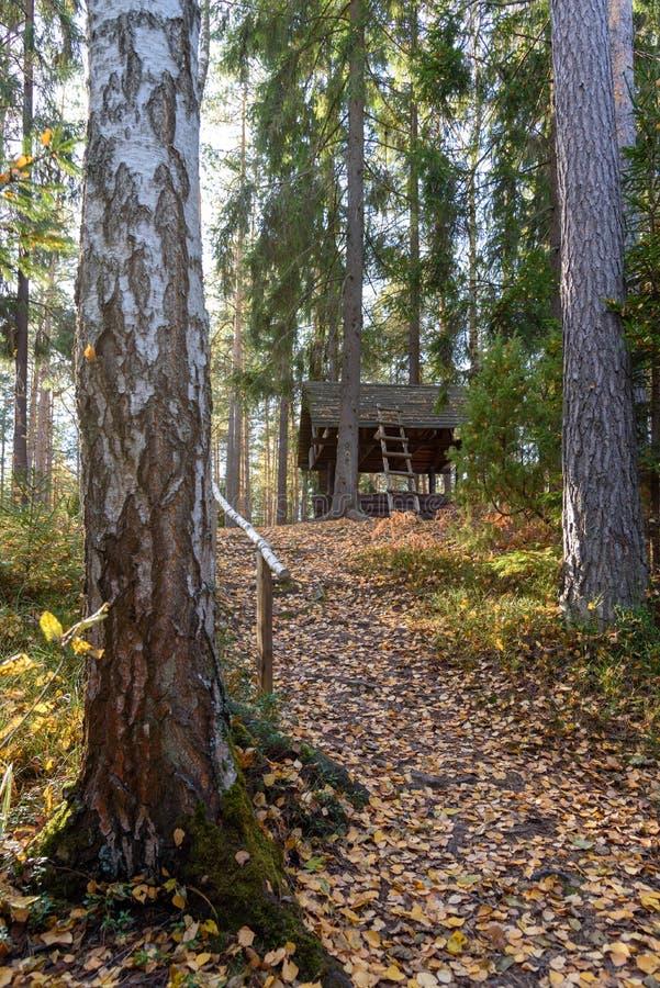 Trajeto que conduz à casa na floresta através das árvores fotos de stock royalty free