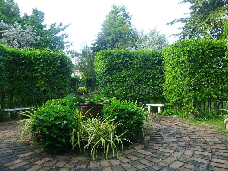 Trajeto redondo do tijolo no jardim inglês fotos de stock