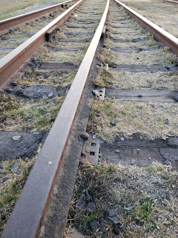 trajetos da estrada de ferro para a ind?stria do transporte na ?rea da grama seca fotografia de stock