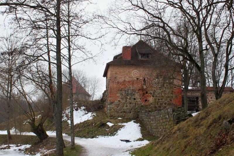 TRAKAI, LITOUWEN - JANUARI 02, 2013: Het Kasteel van het Trakaischiereiland stock foto