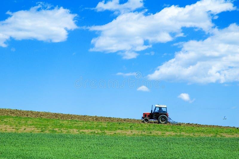 Traktor auf dem grünen Gebiet stockfoto
