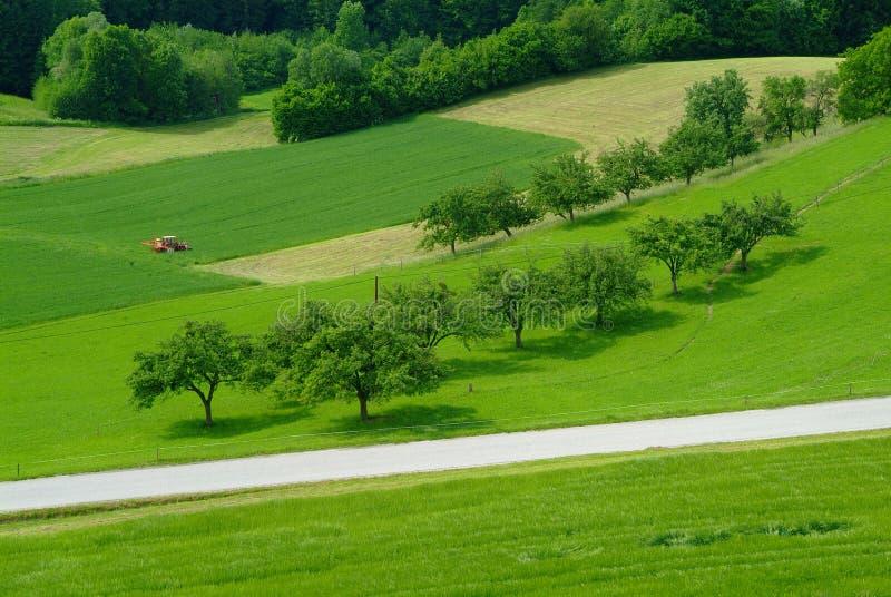 Traktor auf einem Feld stockfoto