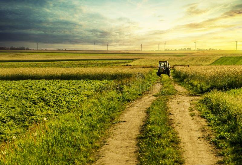 Traktor-Bearbeitung lizenzfreie stockbilder