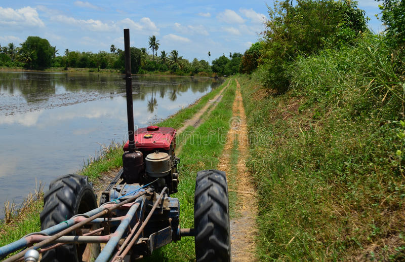 Traktor bredvid tom risfält royaltyfria bilder