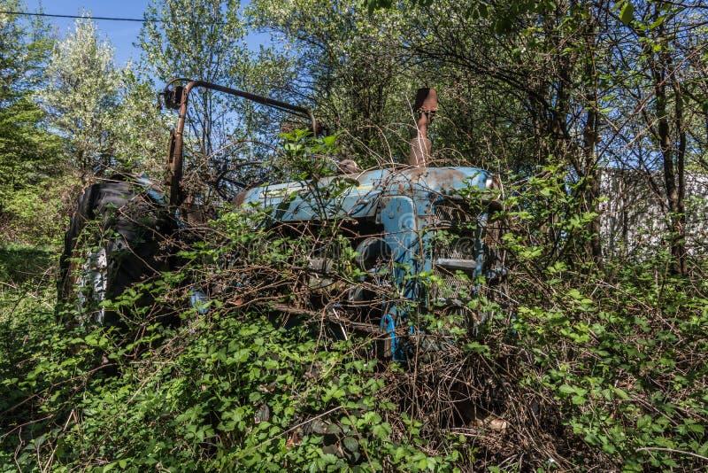 traktor del blauer verwachsener en la naturaleza der fotografía de archivo