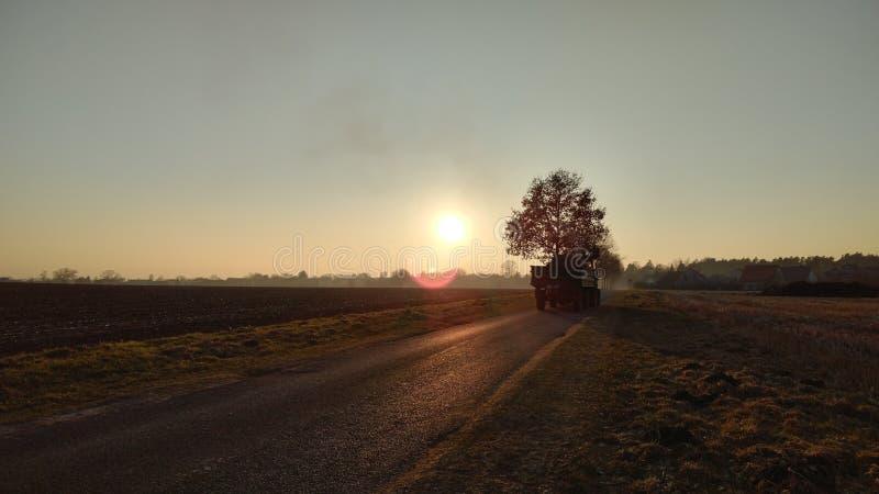 Traktor för en solnedgång arkivbild