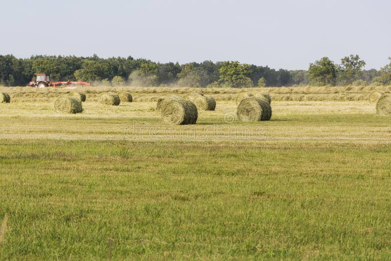 Traktor i avståndet till mot efterkrav hö Sätta in med hörullar field treen arkivbilder