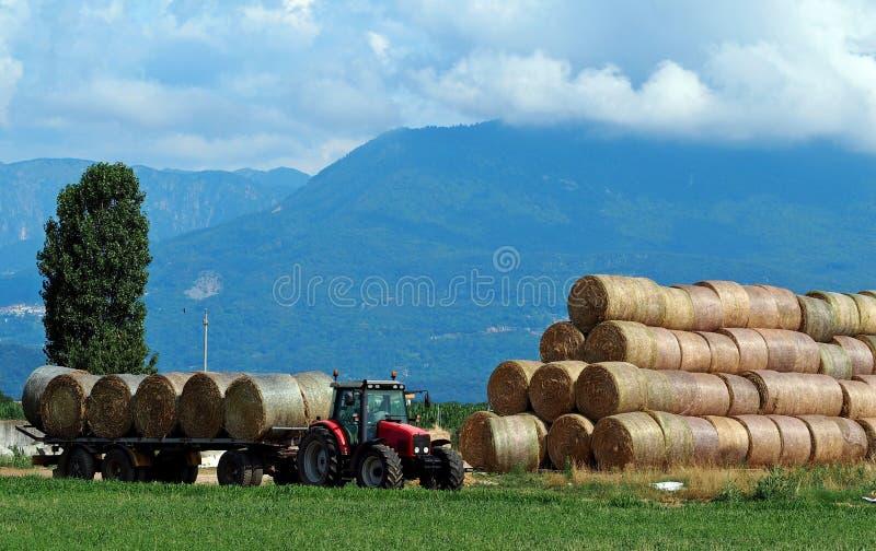 Traktor med hösläpet bredvid en stor bunt av den runda höbalen i ett plan under fjällängarna arkivfoto