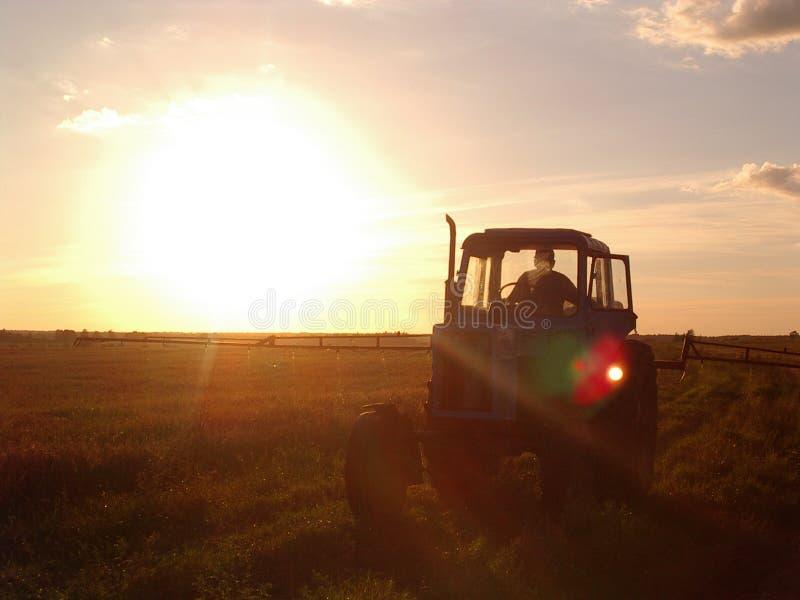 Traktor no por do sol fotografia de stock royalty free