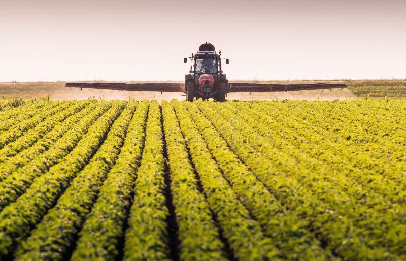 Traktor som besprutar bekämpningsmedel på sojabönafält med sprejaren på spr royaltyfria foton