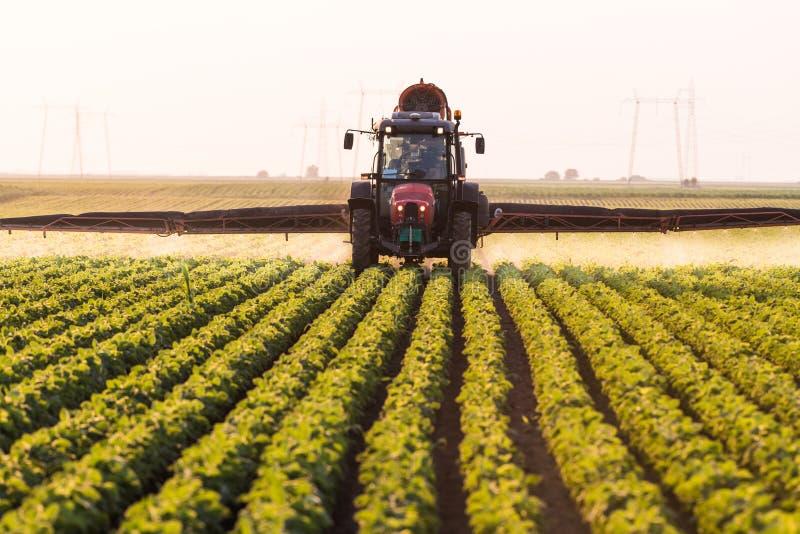 Traktor som besprutar bekämpningsmedel på sojabönafält med sprejaren på spr royaltyfri fotografi
