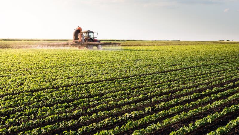 Traktor som besprutar sojabönafältet fotografering för bildbyråer