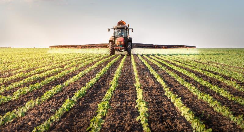 Traktor som besprutar sojabönafältet arkivbilder