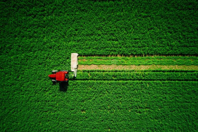 Traktor som mejar det gröna åkerbruka fältet, flyg- surrsikt arkivbild