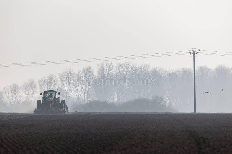 Traktor som plogar landet i morgonen arkivfoton