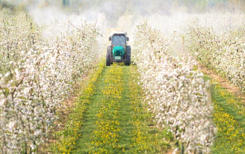 Traktor sprüht Insektenvertilgungsmittel lizenzfreie stockfotografie