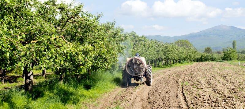 Traktor spr?ht Insektenvertilgungsmittel auf den Apfelgartengebieten lizenzfreies stockbild