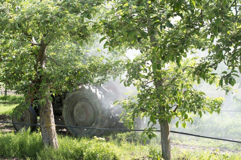 Traktor spr?ht Insektenvertilgungsmittel auf den Apfelgartengebieten stockfoto