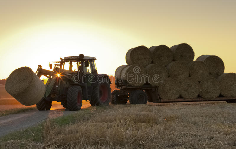 Traktor at work on a field. Loading haystacks royalty free stock images