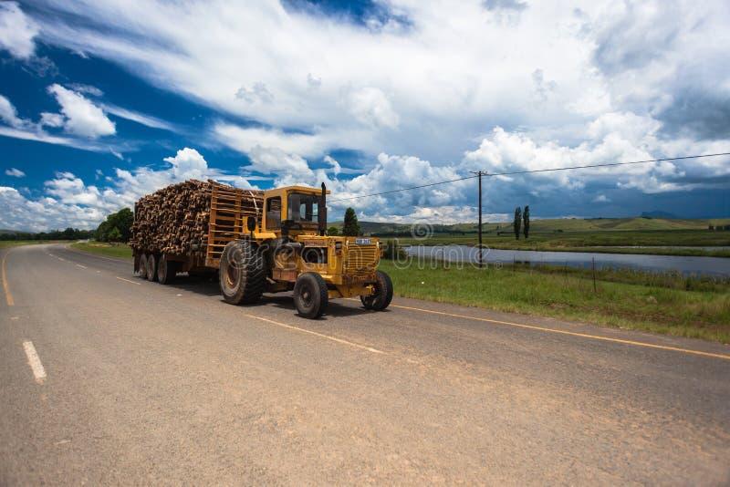 Traktorbergtreen loggar royaltyfri bild