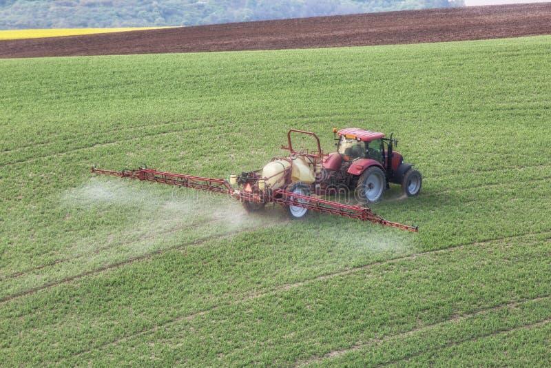 Traktoren bevattnar ett fält i södra Moravia på solnedgången, den härliga sikten med gulingblommor, gulingfältet och grönt gräs,  arkivfoto