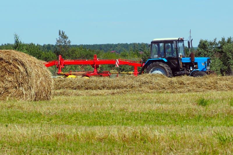 Traktoren mejar gräsmattan royaltyfri bild