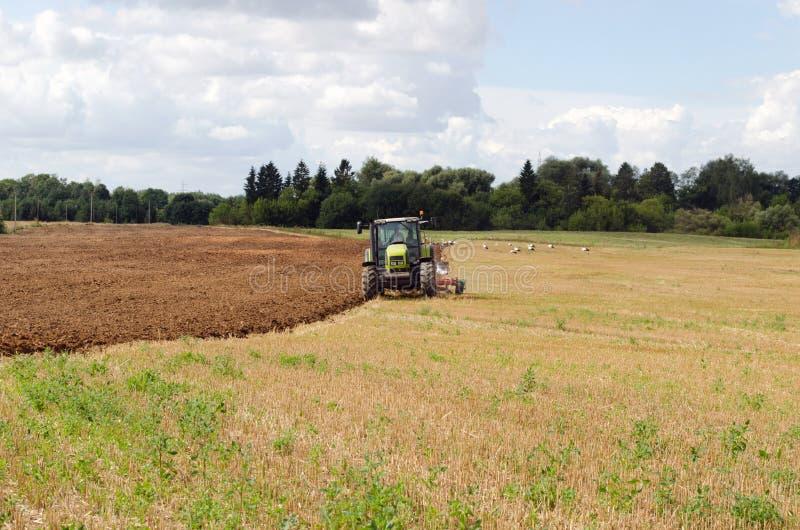 Traktorpflugherbst-Feldstorch stockfotografie