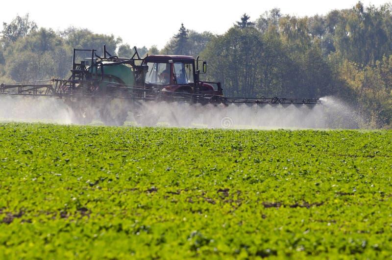 Traktorsprej gödslar med insekticidväxtbekämpningsmedelkemikalieer i åkerbrukt fält royaltyfria foton