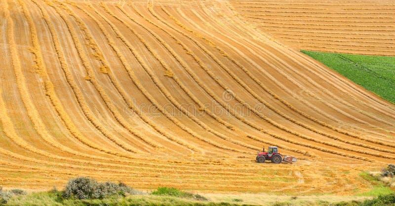 traktorworking arkivfoton