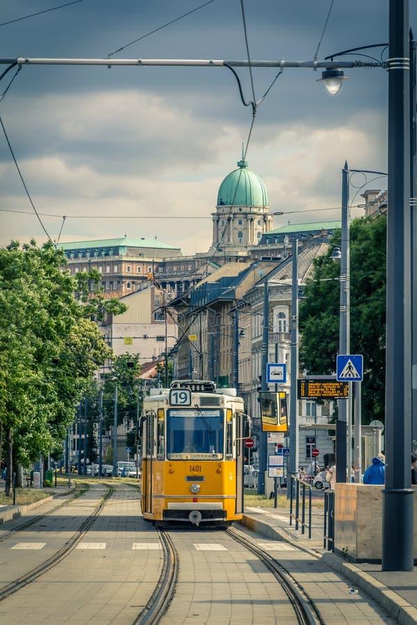 Tram in Budapest, Hungary, Europe stock photo