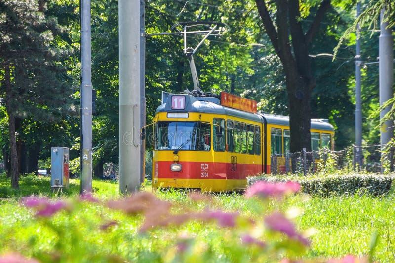 Tram de la Serbie, Belgrade Vieux tramway jaune photographie stock libre de droits