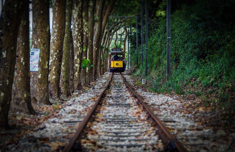 Tram de Sintra au Praia DAS Maçãs images libres de droits