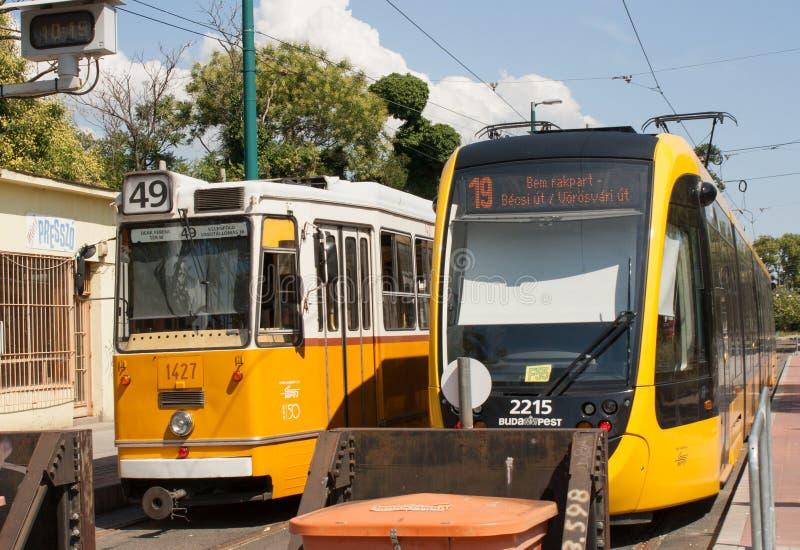2 tram di Budapest immagine stock