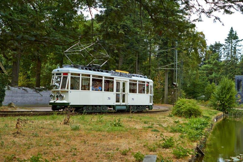 Tram in het de zomerpark stock foto's